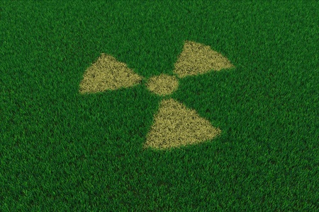 Radiation symbol from thatch on green grass. 3D render image. Stock Photo - 9387997