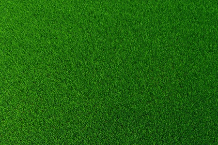 the ground: Green grass background