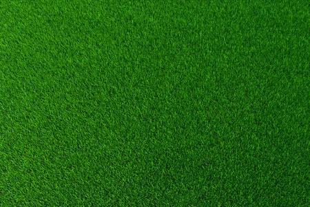 terreno: Sfondo verde erba