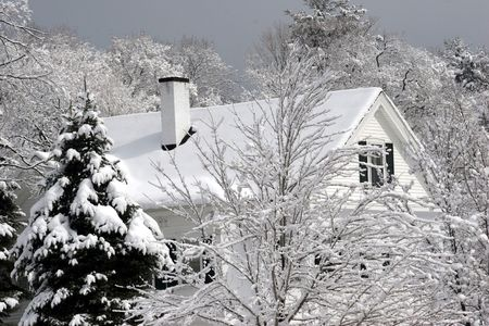Single family house top under snow showing through the trees photo