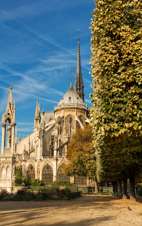 The Notre Dame Cathedral with garden , Paris, France.