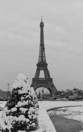 Eiffel tower and pine tree under the snow in winter - Paris Imagens