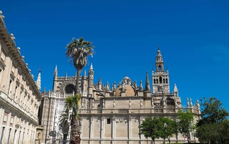 View of famous Seville Cathedral with the Giralda in the background 版權商用圖片