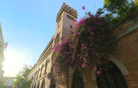 Facade of traditional spanish house decorated with flowers . Seville, Andalusia, Spain, Western Europe.