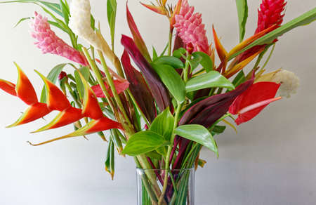 The colorful tropical flowers bouquet arrangement on white background.