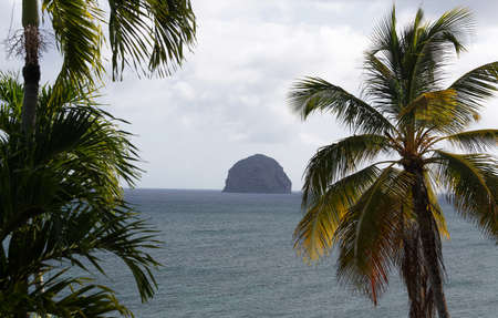 The palm trees in the foreground and Diamond rock and blue sea in the background . Martinique island. Zdjęcie Seryjne