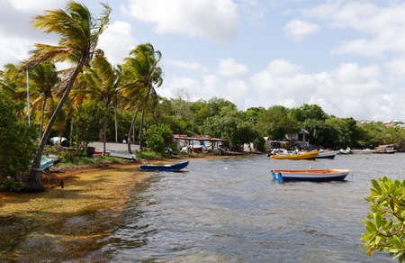 The picturesque Caribbean fishing village , Martinique island, French West Indies.