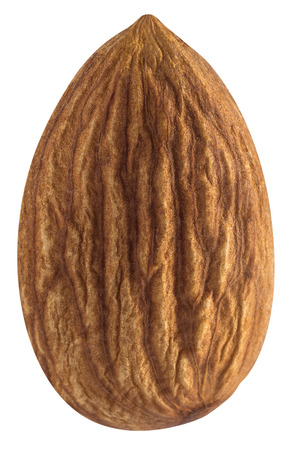 Single almond nut isolated on white background for package design Standard-Bild