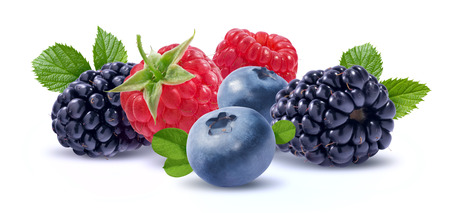 Blackberry, raspberry, blueberry horizontal group isolated on white background as package design element
