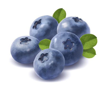 Five blueberries isolated on white background as package design element