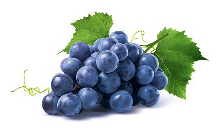 aislado: Uvas azules manojo seco aislado sobre fondo blanco como elemento de diseño del paquete