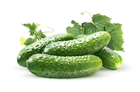 leaf vegetable: Cucumber group and leaves isolated on white as package design element Stock Photo