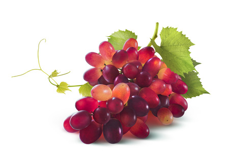 Red grapes bunch with leaf isolated on white background as package design element Foto de archivo
