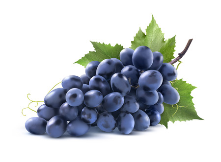 Bunch of blue grapes with leaf isolated on white background as package design element