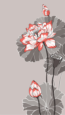 Big white red lotus on grey vector illustration for decoration and design Vettoriali