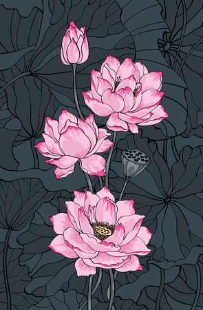 Pink lotus and leaves on dark background illustration for decoration purposes Vettoriali