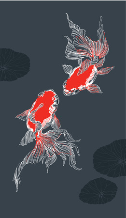 golden fish: Two red golden fish on black background vector vertical for decoration