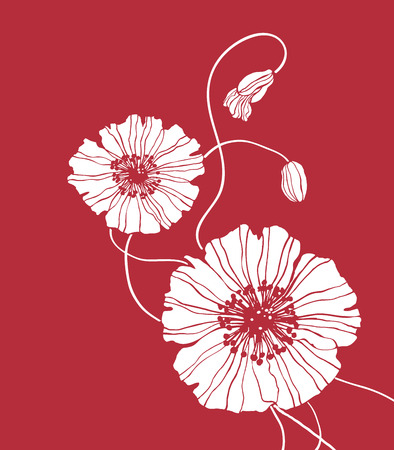 Field flower vector red square for decoration