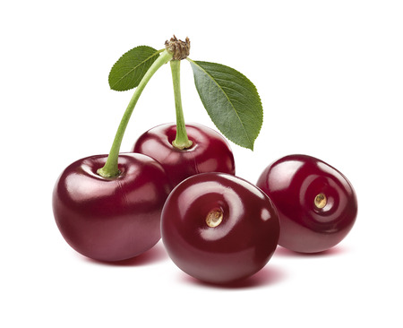 Four red wild cherries isolated on white background as package design element Standard-Bild