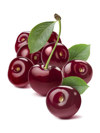 Wild cherry group rich isolated on white background as package design element