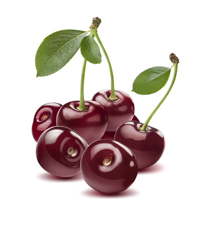 Wild cherry group round isolated on white background as package design element Stock fotó