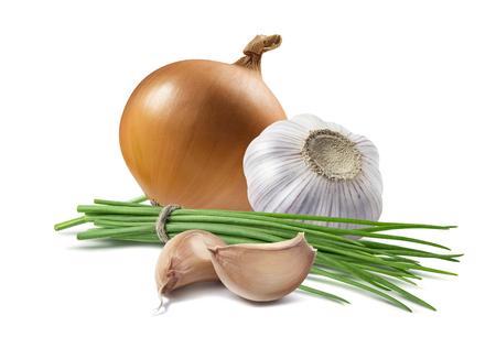 Yellow onion green scallion garlic isolated as package design element Standard-Bild
