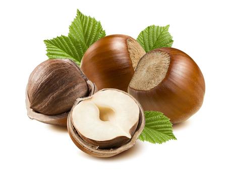 Hazelnut nut half four leaf isolated on white background as package design element