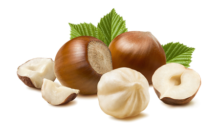 Hazelnut nut many leaves isolated on white background as package design element