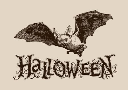 Vintage halloween celebration graphics flying bat horizontal for poster, banner, header, mail, invitation