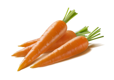 Diagonal fresh carrots isolated on white background as package design element