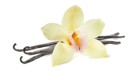 バニラ棒とパッケージ デザイン要素として白い背景で隔離の花