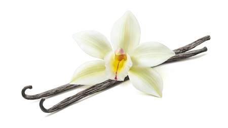 Vanilla flower pod diagonal 2 isolated on white background as package design element Stock Photo