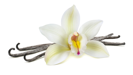 Vanilla flower in the centre on beans isolated on white background as package design element