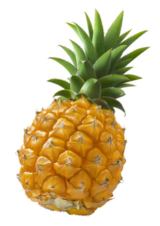 Mini pineapple angle isolated on white background as package design element
