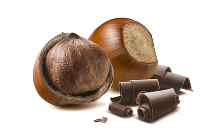 Hazelnut chocolate roll composition isolated on white background as package design element