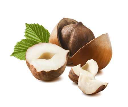 Beautiful hazelnut with leaves isolated on white background for package design Stok Fotoğraf