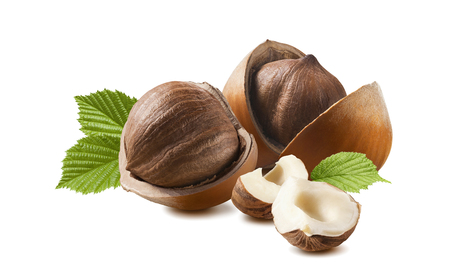 Hazelnut horizontal composition isolated on white background as package design element Stok Fotoğraf