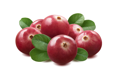 Cranberry composition isolated on white background as package design element