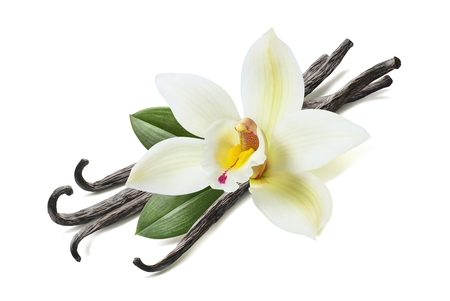 Many vanilla sticks, flower and leaves isolated on white background Stock Photo