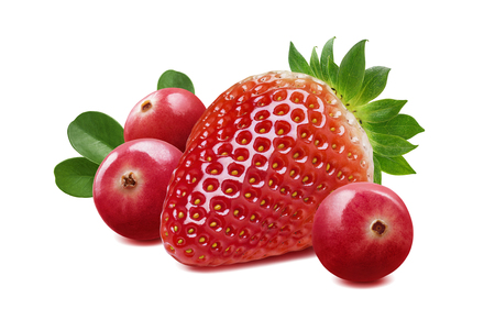 Strawberry and cranberry composition isolated on white background as package design element Stock Photo - 85773433