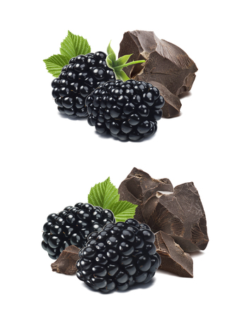 Blackberry and chocolate pieces isolated on white background as package design element