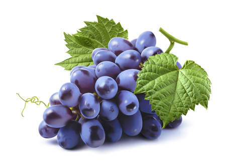 Blue grapes bunch isolated on white background as package design element Foto de archivo