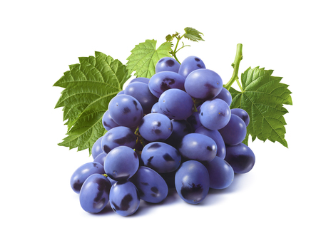 Bunch of blue grapes with leaves isolated on white background as package design element