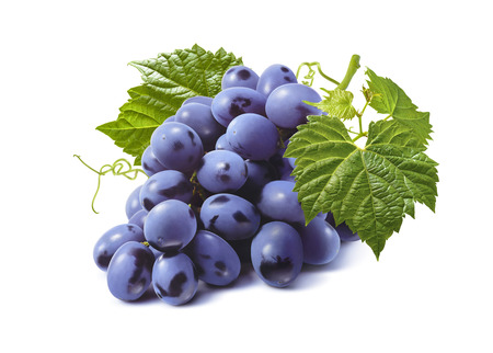 Horizontal bunch of blue grapes isolated on white background as package design element