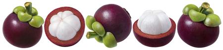 マンゴスティーンセット。パッケージデザイン要素として白い背景に分離された果物のいくつかのオプション