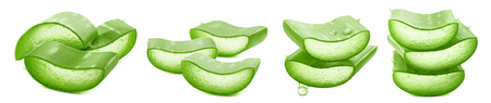 Sliced aloe vera horizontal collection isolated on white background as package design elements 스톡 콘텐츠