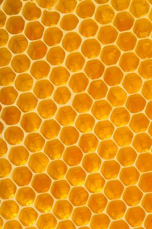 Golden honeycomb background texture. Honey elements for decoration