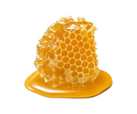 Honeycomb piece. Honey slice isolated on white background. Package design element