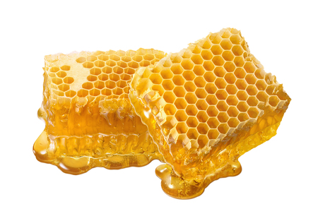 Honeycomb double piece. Honey slices isolated on white background with clipping path