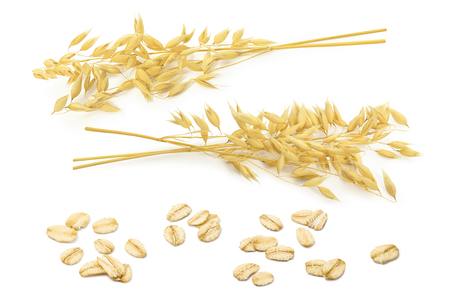 Oatmeal set. Oat ears and rolled grains isolated on white background. Package design elements